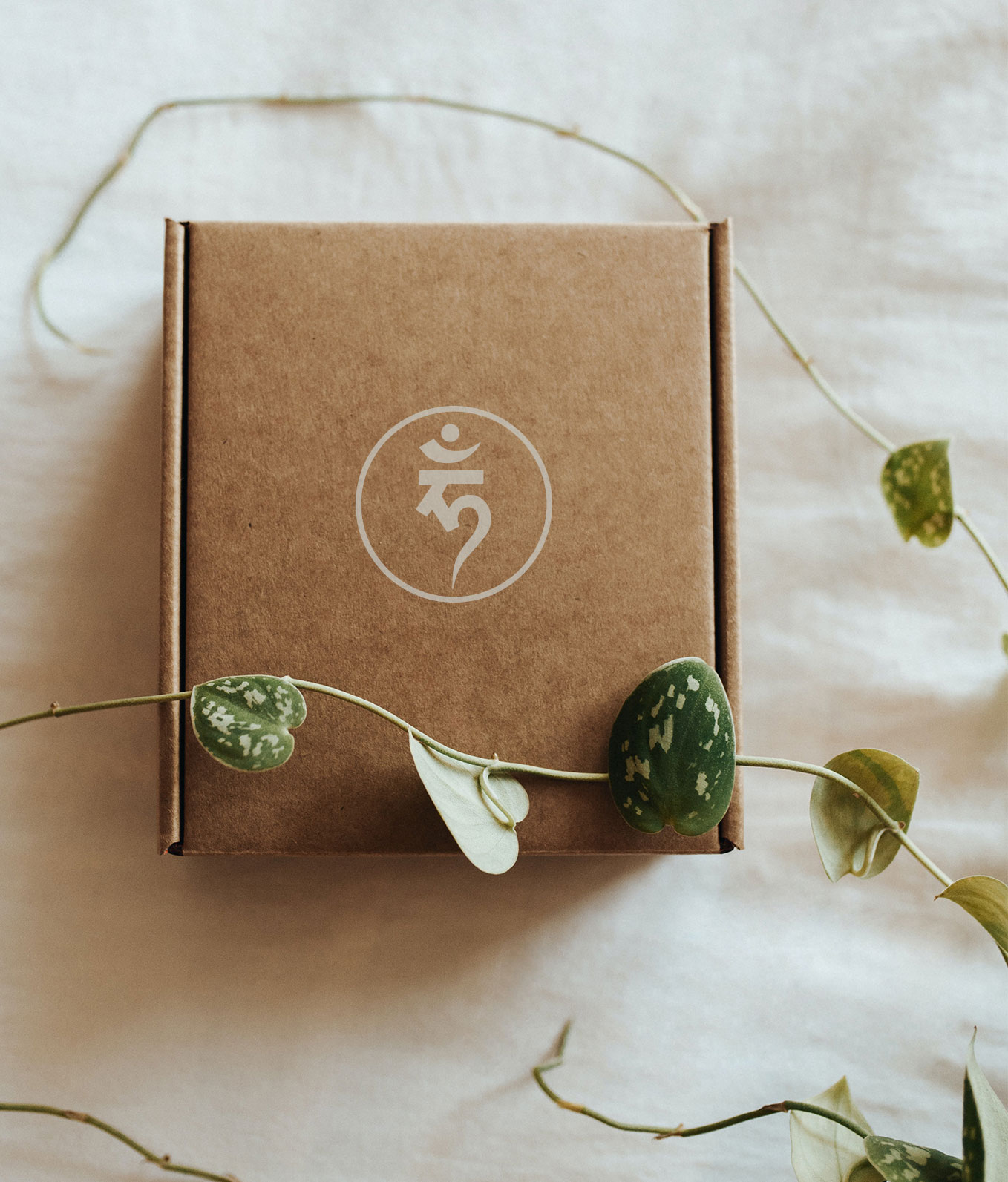Ethical and sustainable fashion products packaging