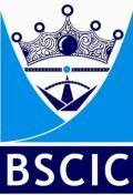BSCIC Logo